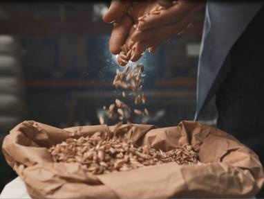 A handful of grain is poured into a sack full of grain