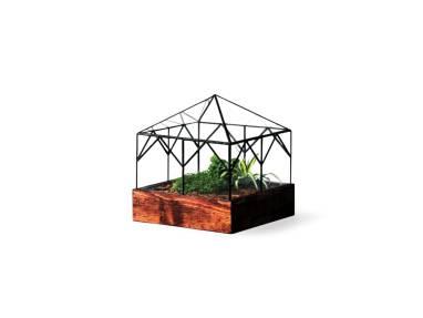 Glass Cottage Terrarium