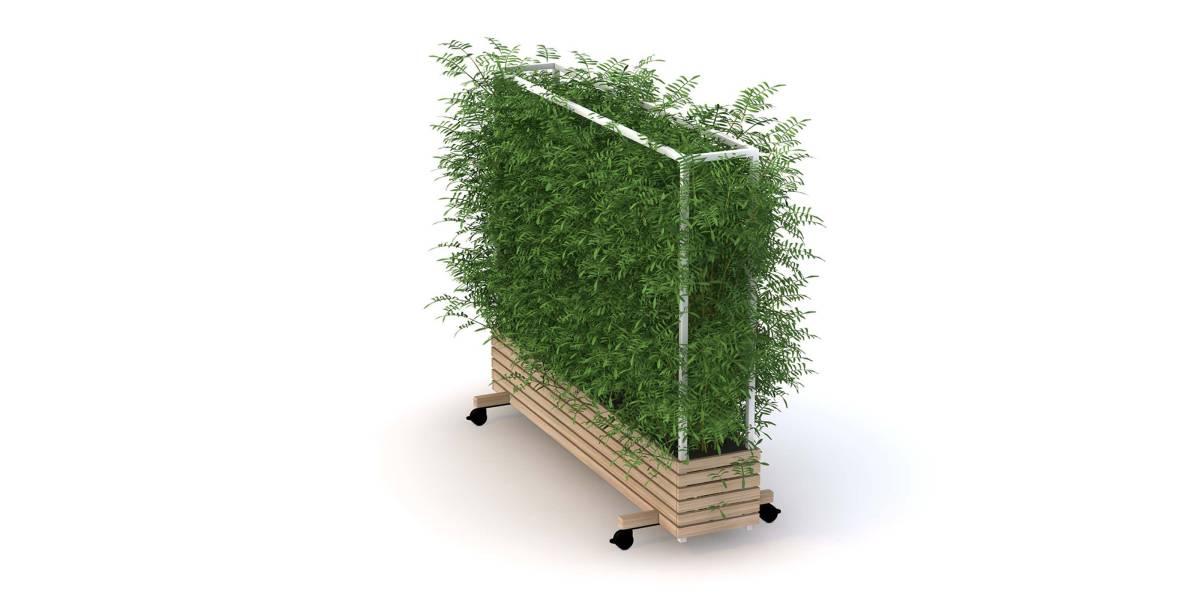Low Planter