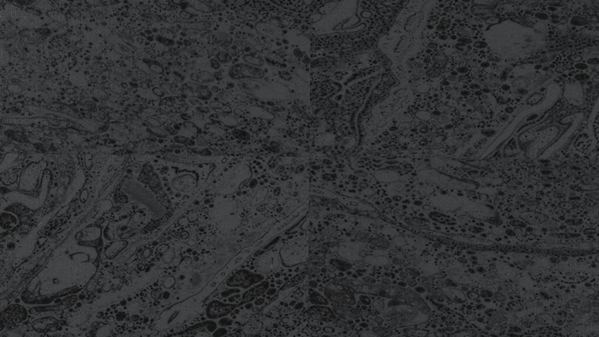 Marbled Wallcovering