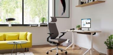 Steelcase Gesture Chair & Flex HAT