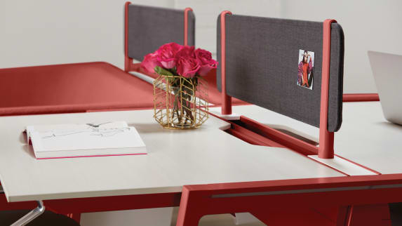 Bivi desks