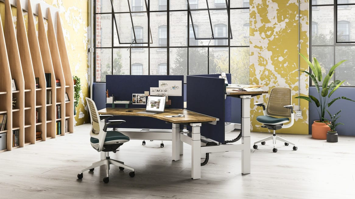A group of workstations created with Ology height adjustable benches, blue Universal Center Screens, and Steelcase Series 1 desk chairs