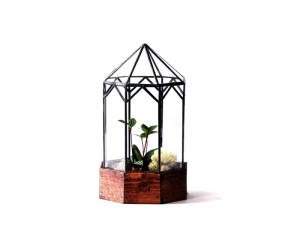 An ornate LeadHead glass terrarium with plants inside