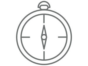 ARC compass icon