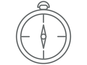 ARC compass icon